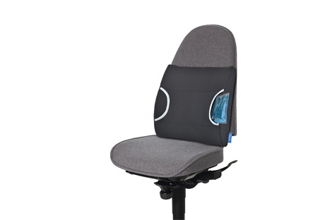 Warm/Cool Lumbar Support